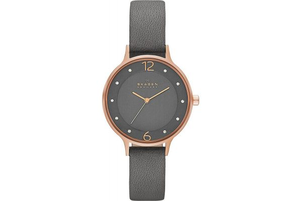 Womens Skagen Anita Watch skw2267