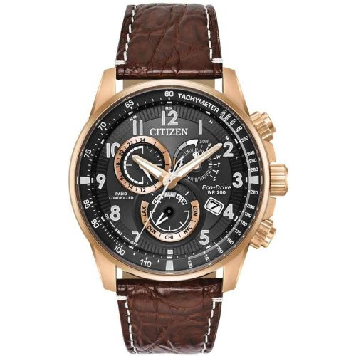 Citizen Perpetual A-T